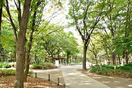 「新宿中央公園(東京都新宿区西新宿2-11)」の画像検索結果